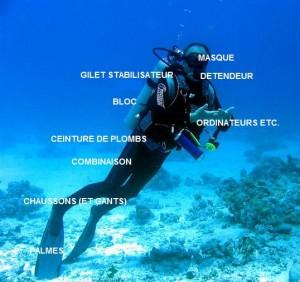 plongeur2